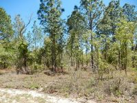 Home for sale: 22024 S.W. Edgewater Dr., Dunnellon, FL 34431