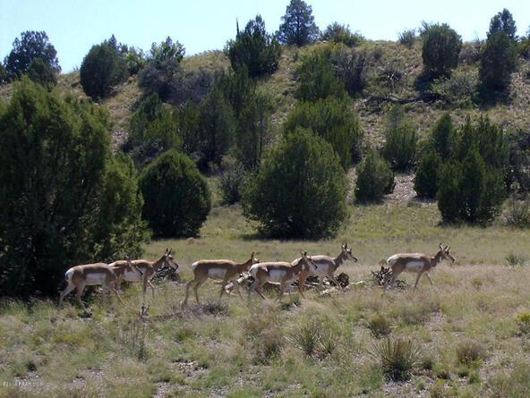 16301 N. Petroglyph, Prescott, AZ 86305 Photo 19
