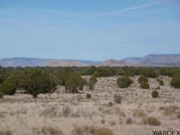 Home for sale: Lot 689 Northwestern Ranches, Peach Springs, AZ 86434