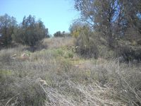 Home for sale: 5760 N. Kramer, Rimrock, AZ 86335