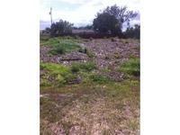 Home for sale: 852 Mccoy Avenue, Port Saint Lucie, FL 34953