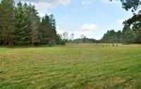 Home for sale: 25215 Bootjack Rd., Lake Linden, MI 49945