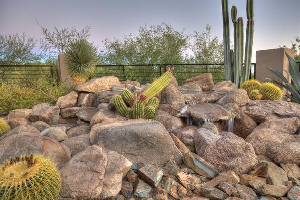 40425 N. 109th Pl., Scottsdale, AZ 85262 Photo 52