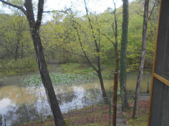 545 Rainwood Lodge Rd., Quinton, AL 35130 Photo 36