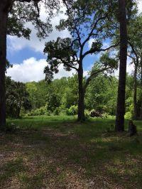 Home for sale: 104 Wakulla Beach Rd., Crawfordville, FL 32327