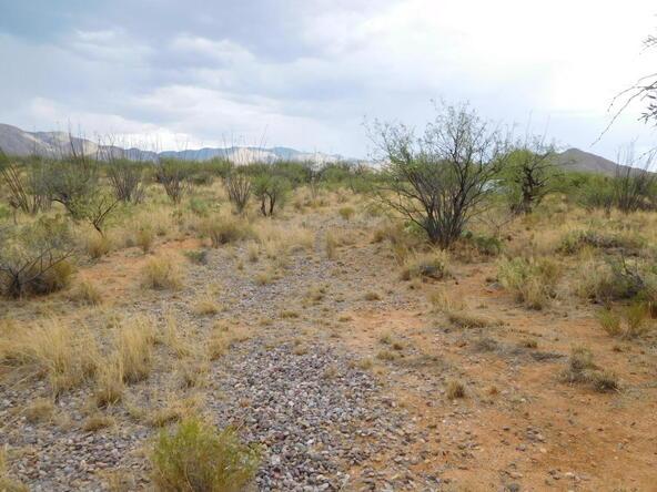 16705 S. Sierrita Mountain, Tucson, AZ 85736 Photo 19