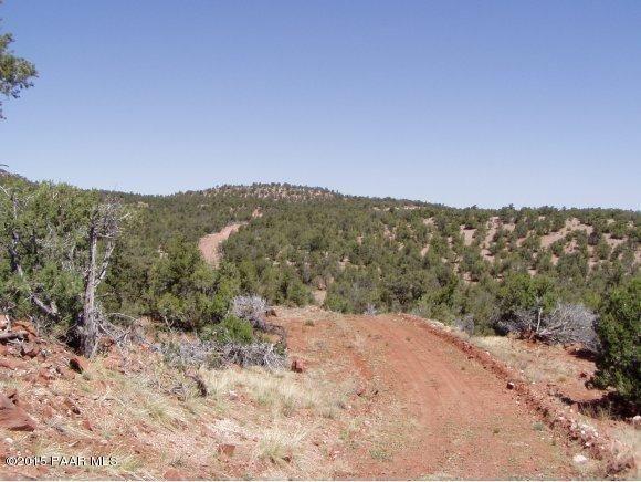 1024 Sierra Verde Ranch, Seligman, AZ 86337 Photo 21