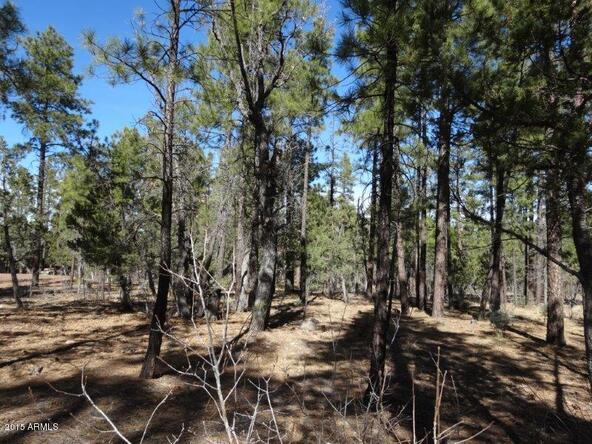 1090 W. Sadler Ln., Lakeside, AZ 85929 Photo 14