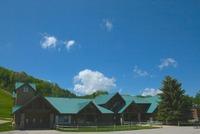 Home for sale: 493 Chamonix Ln., Harbor Springs, MI 49740