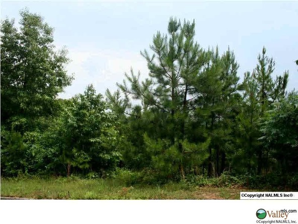 Ridgefield Cir., Guntersville, AL 35976 Photo 5