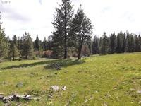Home for sale: 627 Pine Creek Rd., Bickleton, WA 99322