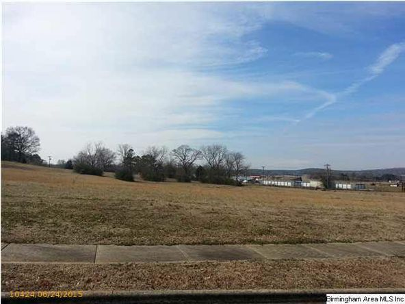 20 Old Roadway, Cropwell, AL 35054 Photo 8