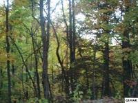 Home for sale: 1029 Fox Tail Trail, Gatlinburg, TN 37738
