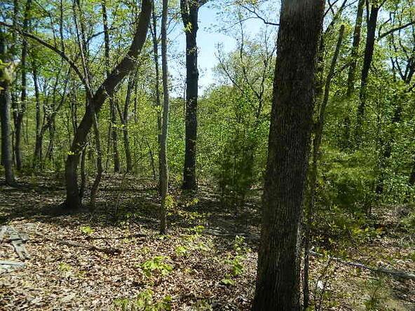 Lot 8 Teel Point, Cleveland, GA 30528 Photo 21