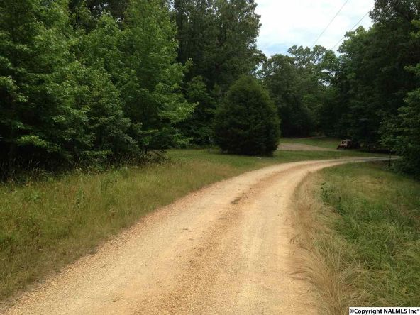 1062 County Rd. 137, Cedar Bluff, AL 35959 Photo 5