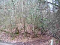 Home for sale: Tbd Alantis Ln., Abingdon, VA 24210