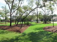 Home for sale: 7 Front Porch Cir., Niceville, FL 32578