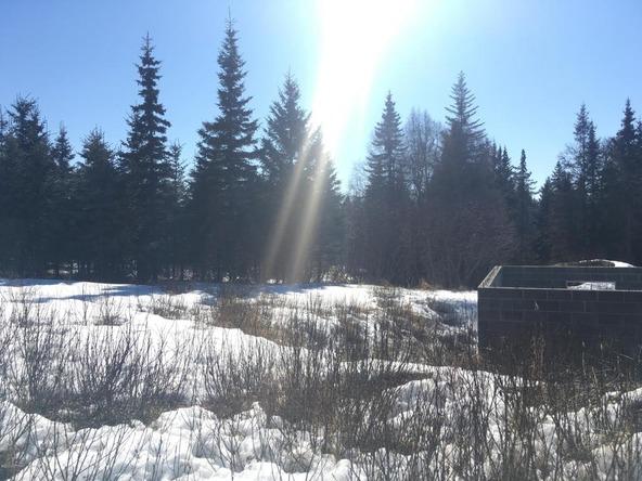 17862 Arcturus Loop, Ninilchik, AK 99639 Photo 29