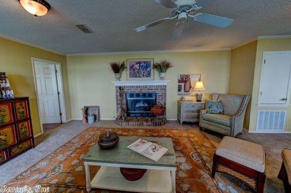 197 Pine Valley Lp, Houston, AR 72070 Photo 5