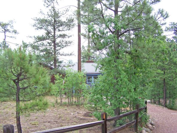 53 County Rd. 2067, Alpine, AZ 85920 Photo 2