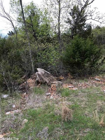 1252 Nc 3600 Rd., Western Grove, AR 72685 Photo 21