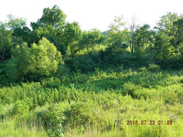 16.63 Ac Pr 3317, Clarksville, AR 72830 Photo 4