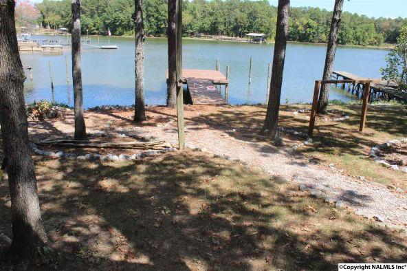 31 County Rd. 131, Cedar Bluff, AL 35959 Photo 5