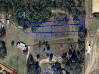 Home for sale: 0 Lee Boy Rd., Newton, AL 36352