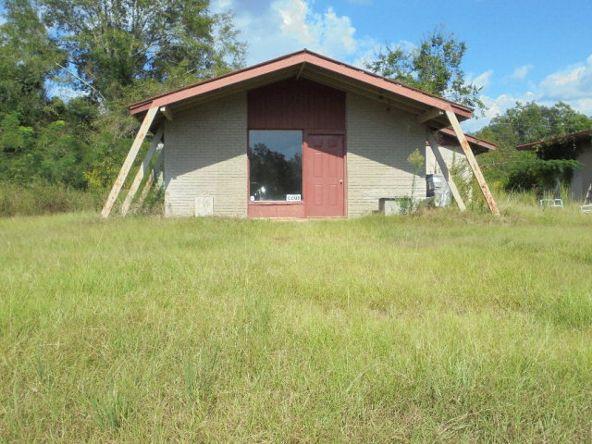 3153 Hwy. 231 South, Brundidge, AL 36010 Photo 2
