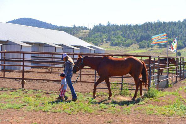6701 N. Rain Valley Rd., Flagstaff, AZ 86004 Photo 6