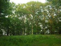 Home for sale: 320 N. Bluff, Gladstone, MI 49837