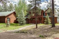 Home for sale: 2596a County Rd. 119, Pagosa Springs, CO 81147