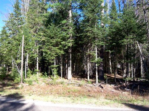 Lot 4 Eagles Ridge, Eagle River, WI 54521 Photo 5