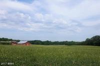 Home for sale: 259 Poplar Rd., Fredericksburg, VA 22406