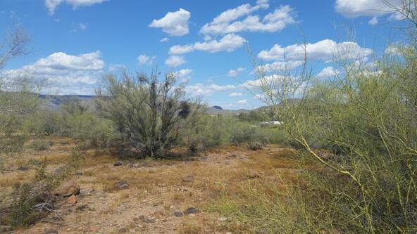 45### N. 8th Pl., New River, AZ 85087 Photo 7