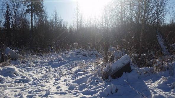 6321 N. Moose Meadows Rd., Wasilla, AK 99654 Photo 12