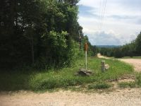 Home for sale: 000 W. Mockingbird Trail, Diamond City, AR 72630