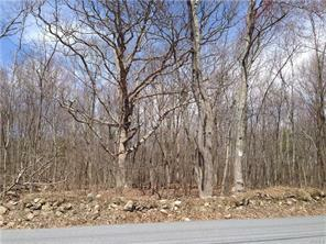 Toad Pasture Rd., Middletown, NY 10940 Photo 7