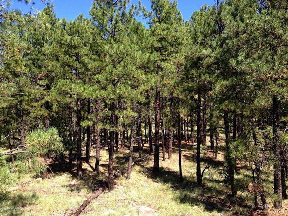 125 E. Mount Elden Lookout Rd., Flagstaff, AZ 86001 Photo 7
