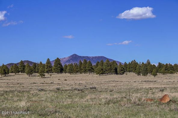 3327 N. Spring Valley Rd., Parks, AZ 86018 Photo 4