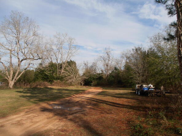 34111 Us Hwy. 98, Lillian, AL 36549 Photo 7