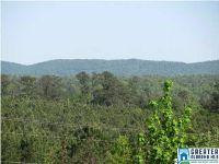 Home for sale: 0 Indian Valley Dr., Sylacauga, AL 35150