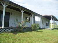 Home for sale: 122 Cockatiel, Parrottsville, TN 37843