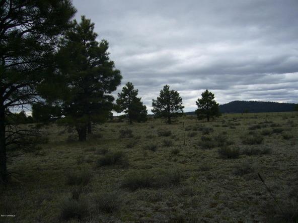 10558 E. White Horse Lake, Parks, AZ 86018 Photo 27