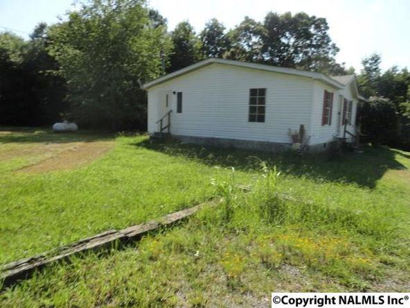 5219 Alabama Hwy. 40, Dutton, AL 35744 Photo 2