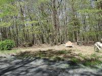 Home for sale: Lot 628 White Pine Cir., Lake Ariel, PA 18436