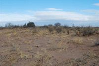Home for sale: Tumbleweed Rd. S.W., Deming, NM 88030
