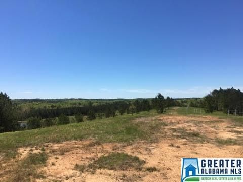 169 Shire Valley Rd., Chelsea, AL 35051 Photo 6