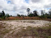 Home for sale: 1007 Greenbriar Dr., Christmas, FL 32709