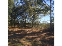 Home for sale: Kicklighter Rd., Lake Helen, FL 32744
